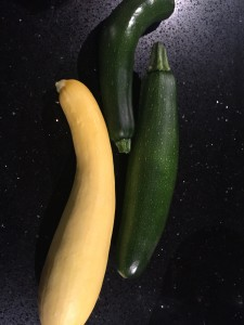 Zucchini and Squash Harvest